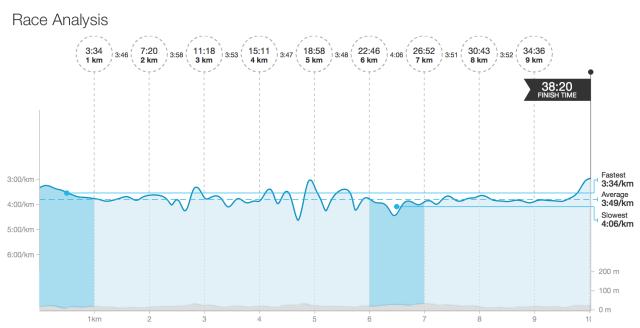 winter run race analysis